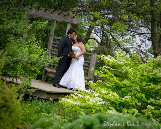 Ottawa Wedding Photography photo