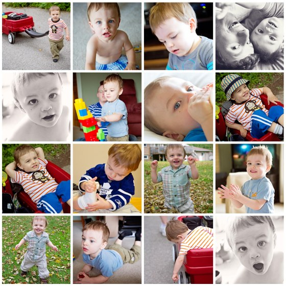 Ottawa Child Photography - Toddler