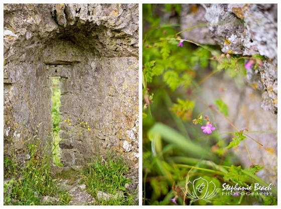 Rock of Dunamase Stephanie Beach Photography