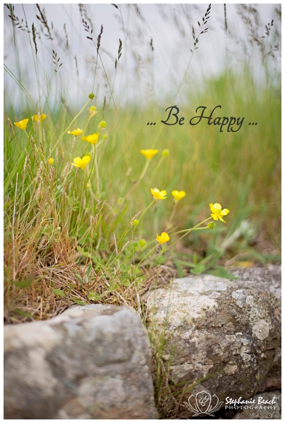 Stephanie Beach Photography Inspirational Photo
