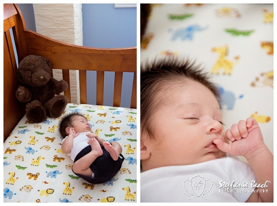 Ottawa Newborn Photography Ketan Stephanie Beach Photography