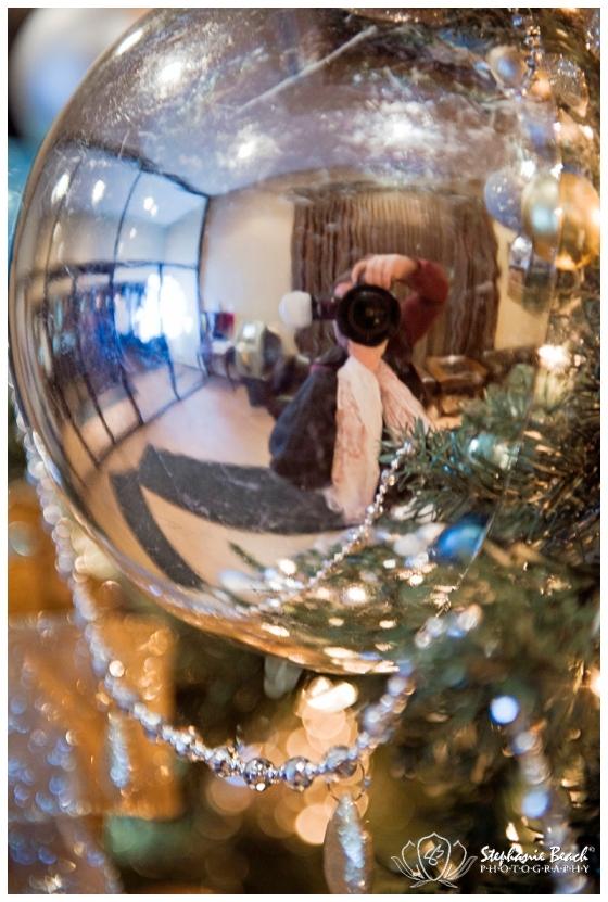 Ottawa Christmas Stephanie Beach Photography