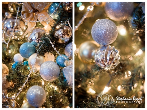 Ottawa Christmas Stephanie Beach Photography