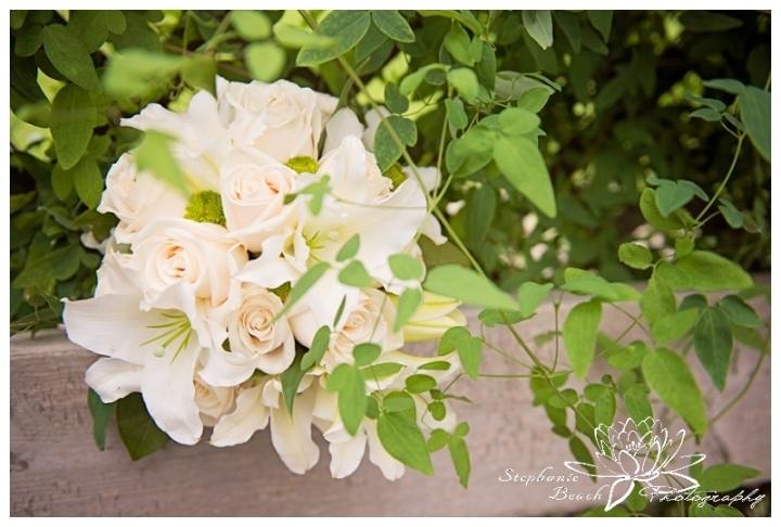 Ottawa Wedding Photographer Stephanie Beach Photography