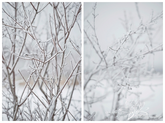 Ottawa Winter Photography Stephanie Beach Photography