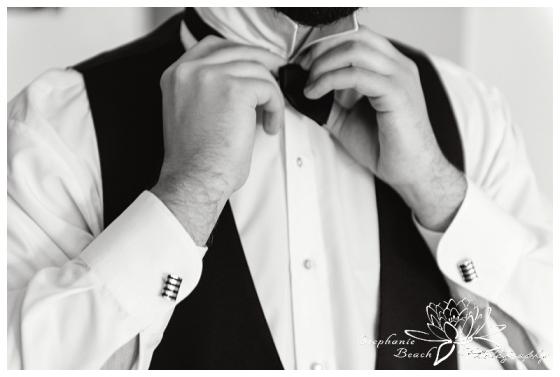 Ottawa Arc Hotel Wedding Stephanie Beach Photography
