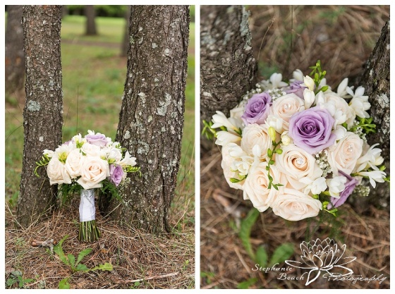 Glen Mar Golf Course Wedding Stephanie Beach Photography 10