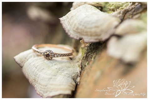Lime Kiln Trail Engagement Session Stephanie Beach Photography 01