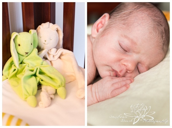 Ottawa Newborn Photoshop Lifestyle Newborn Session Stephanie Beach Photography