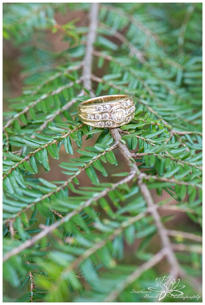 Gatineau Park Engagement Session Stephanie Beach Photography 08
