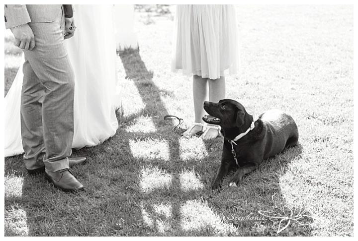 Temple's Sugar Bush Wedding Stephanie Beach Photography 15