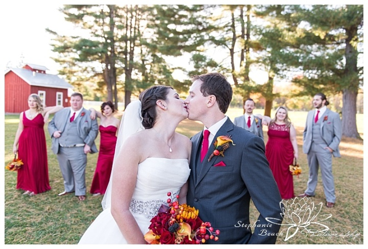 Cornwall-Ramada-Inn-Williamstown-Fairgrounds-Wedding-Stephanie-Beach-Photography-portrait-bride-groom-bridesmaids-groomsmen