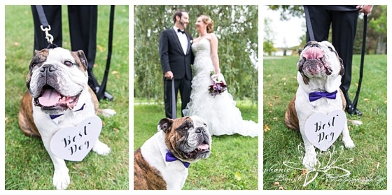 museum-of-nature-ottawa-wedding-stephanie-beach-photography-willow-tree-bride-groom-dog