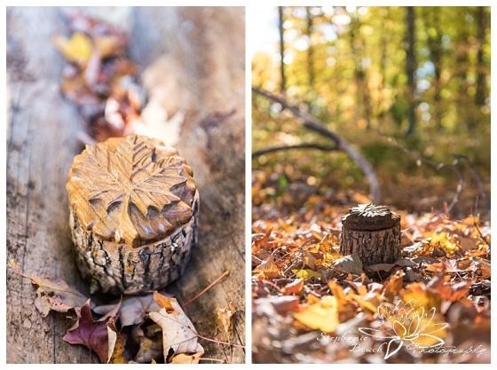 temples-sugar-bush-fall-wedding-stephanie-beach-photography-ring-box-details
