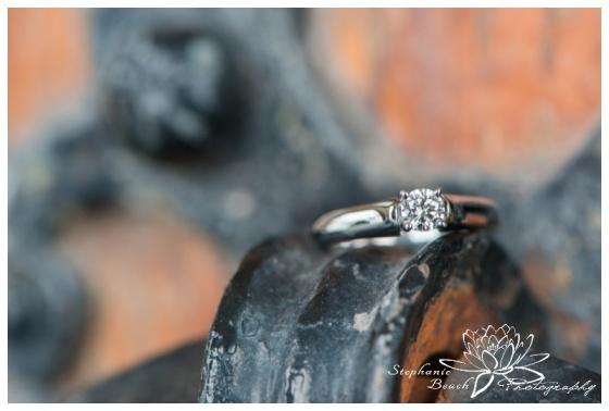 Ottawa-Proposal-Engagement-Parliament-Hill-Stephanie-Beach-Photography