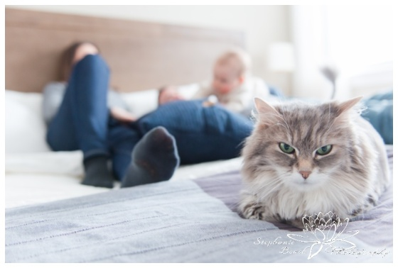 Ottawa-Family-Photographer-Stephanie-Beach-Photography-indoor-session-baby-cat