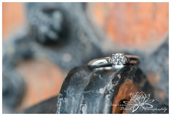 Ottawa-Proposal-Session-Stephanie-Beach-Photography-Parliament-Hill-engagement-ring