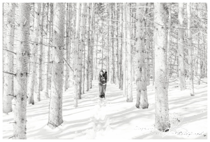 Ottawa-Maternity-Session-Stephanie-Beach-Photography-Winter-pregnancy-trees-forest