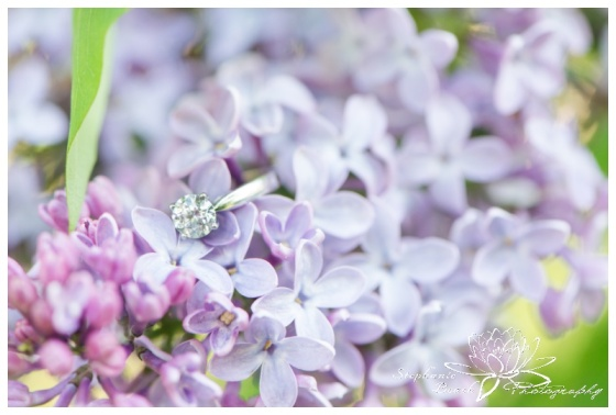 Gatineau-Park-Engagement-Stephanie-Beach-Photography-ring-macro-lilac