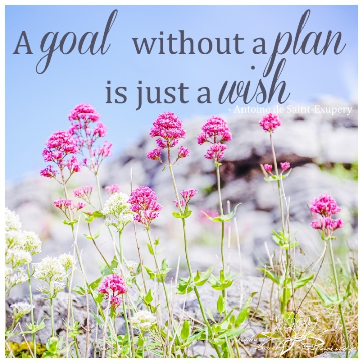 Goal-Without-a-plan-is-just-a-wish-Stephanie-Beach-Photography-Inspiration-Quote