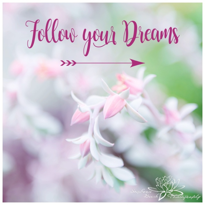 Follow-Your-Dreams-Stephanie-Beach-Photography-inspiration-quote