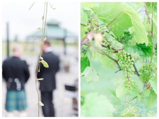 Jabulani-Vineyard-Wedding-Stephanie-Beach-Photography-vineyard
