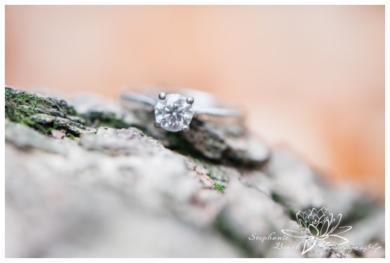 Jack-Pine-Trail-Engagement-Session-Stephanie-Beach-Photography