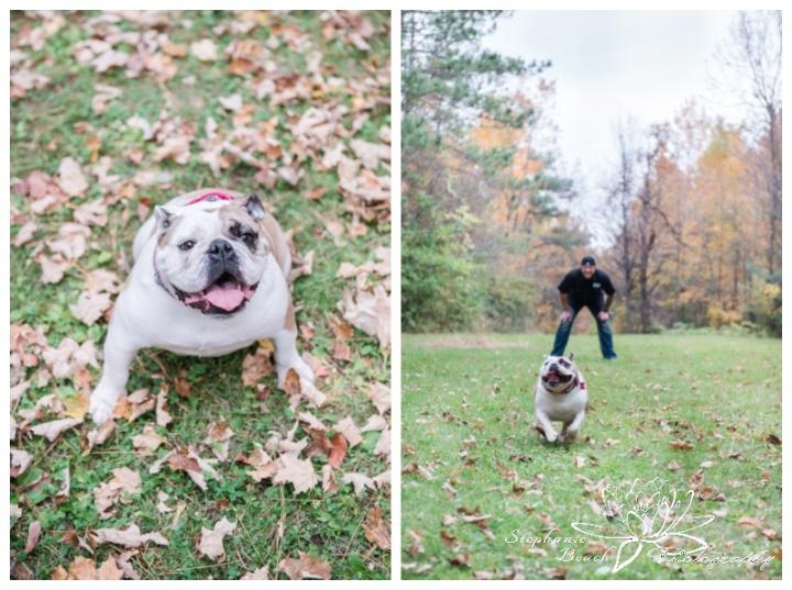 Anniversary-Portrait-Session-Sheila-McKee-Park-Stephanie-Beach-Photography-bulldog-dog