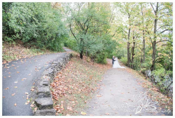 Hogs-Back-Park-Wedding-Stephanie-Beach-Photography-bride-groom-fall-leaves-trees