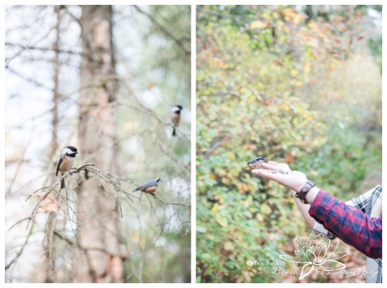 Jack-Pine-Trail-Engagement-Session-Stephanie-Beach-Photography-fall-colours-bird-feeding-chickadees