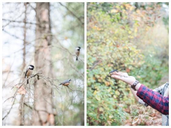 Jack-Pine-Trail-Engagement-Session-Stephanie-Beach-Photography-fall-colours-bird-feeding-chickadees