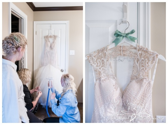 Stanleys-Olde-Maple-Lane-Farm-Wedding-Stephanie-Beach-Photography-prep-dress-bride-bridesmaids-gown