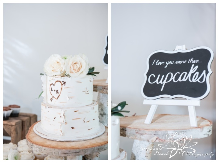 Stanleys-Olde-Maple-Lane-Farm-Wedding-Stephanie-Beach-Photography-reception-decor-cake-decor-reception