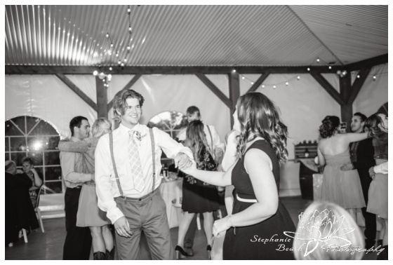 Stanleys-Olde-Maple-Lane-Farm-Wedding-Stephanie-Beach-Photography-reception