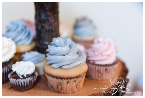 Temple's-Sugar-Bush-Ottawa-Wedding-Stephanie-Beach-Photography
