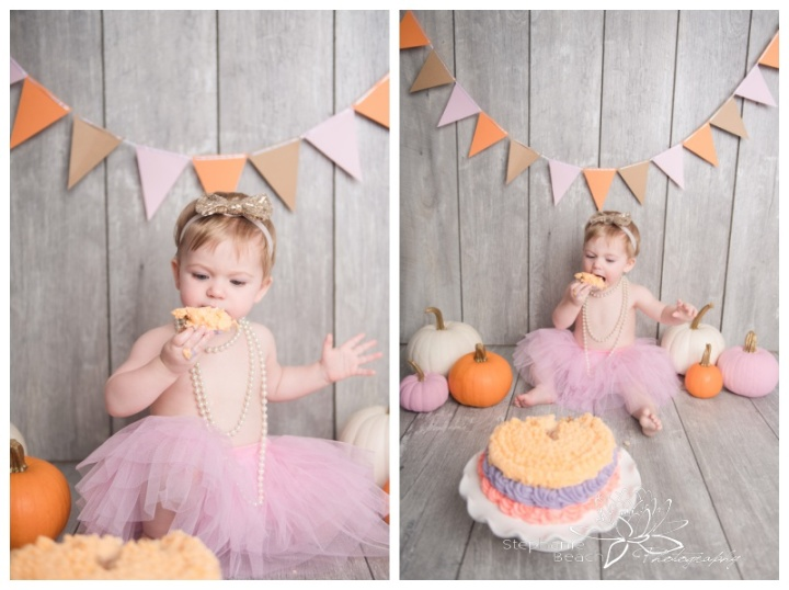 Ottawa-Cake-Smash-Studio-First-Year-Portraits-Stephanie-Beach-Photography