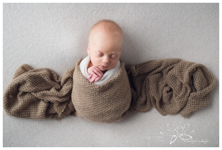 Ottawa-Studio-Newborn-Photography-Stephanie-Beach-Photography