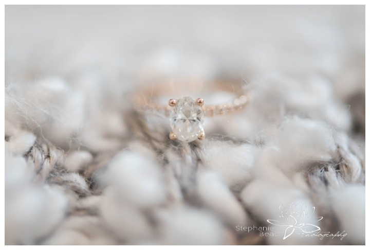 Museum-of-Nature-Winter-Wedding-Stephanie-Beach-Photography
