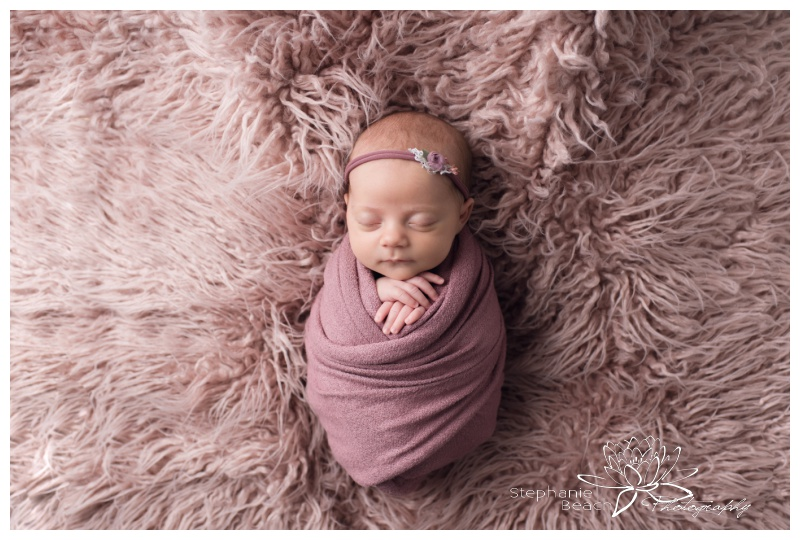 Ottawa-Studio-Swaddled-Newborn-Session-Stephanie-Beach-Photography