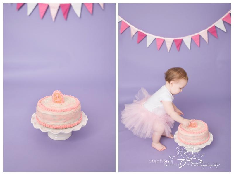 Ottawa-Studio-Cake-Smash-First-Year-Portraits-Stephanie-Beach-Photography